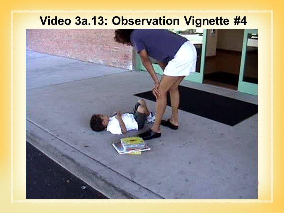 Video 3a.13: Observation Vignette #4
