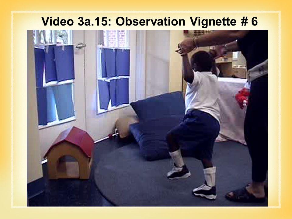 Video 3a.15: Observation Vignette # 6
