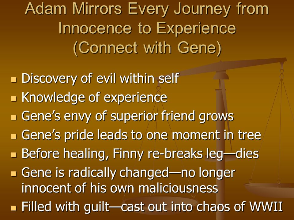 Adam Mirrors Every Journey from Innocence to Experience (Connect with Gene) Discovery of evil within self Discovery of evil within self Knowledge of e