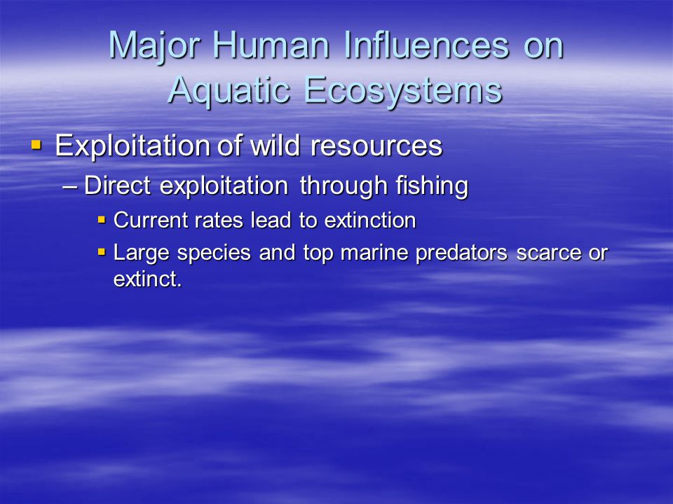 Major Human Influences on Aquatic Ecosystems  Exploitation of wild resources –Direct exploitation through fishing  Current rates lead to extinction