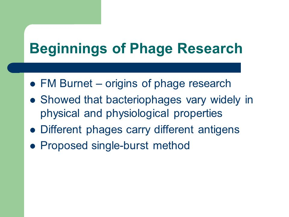 Beginnings of Phage Research FM Burnet – origins of phage research Showed that bacteriophages vary widely in physical and physiological properties Dif