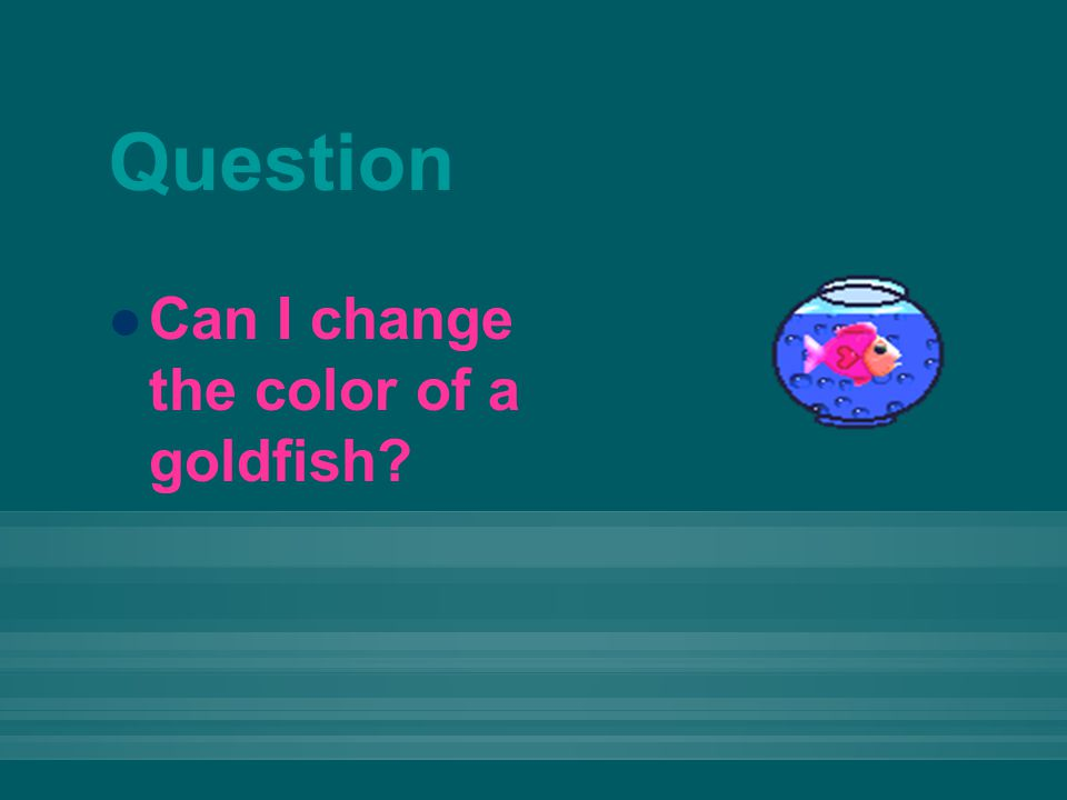 Question Can I change the color of a goldfish?