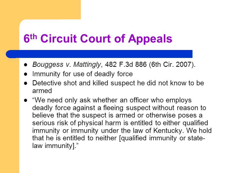 6 th Circuit Court of Appeals Bouggess v. Mattingly, 482 F.3d 886 (6th Cir. 2007). Immunity for use of deadly force Detective shot and killed suspect