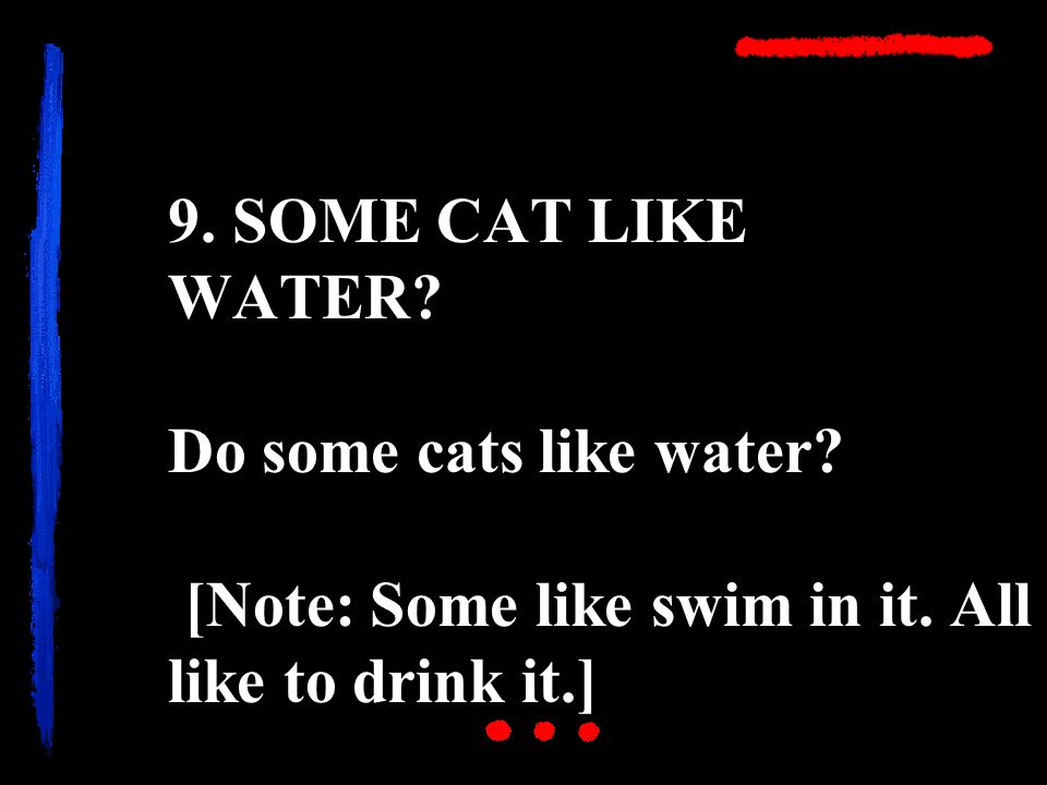 9. SOME CAT LIKE WATER. Do some cats like water.