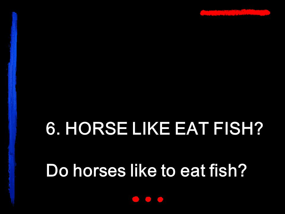 6. HORSE LIKE EAT FISH Do horses like to eat fish