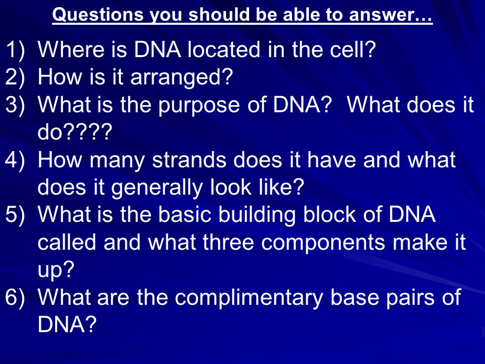 Questions you should be able to answer… 1)Where is DNA located in the cell.