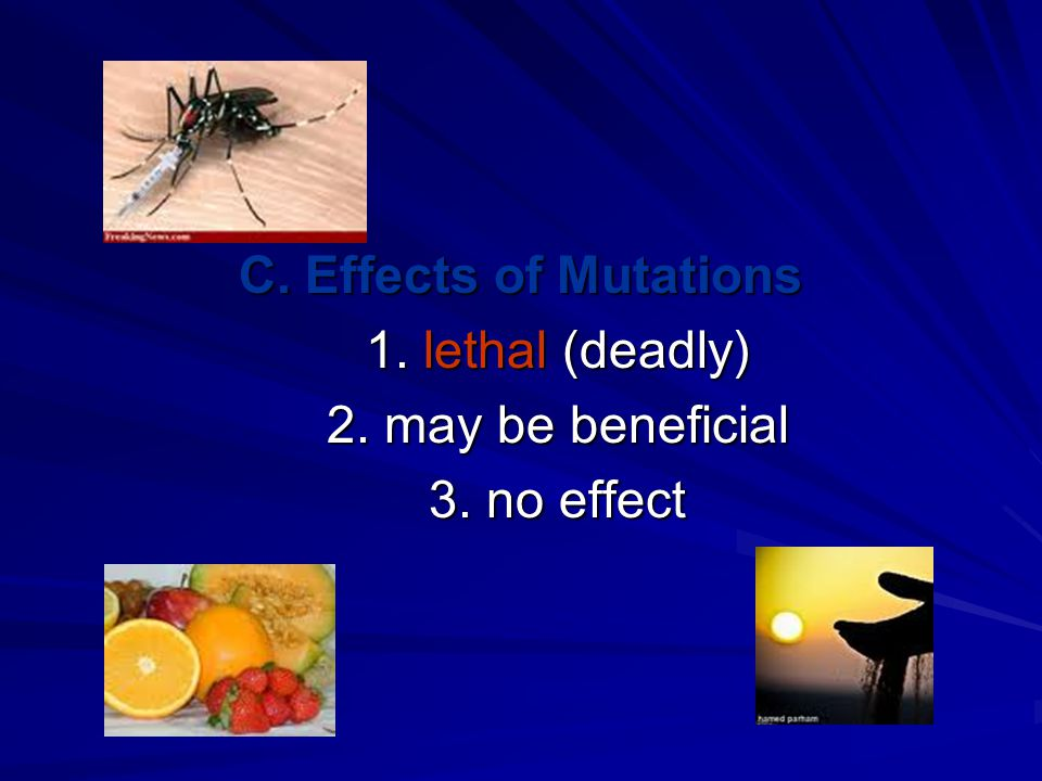 C. Effects of Mutations 1. lethal (deadly) 1. lethal (deadly) 2.