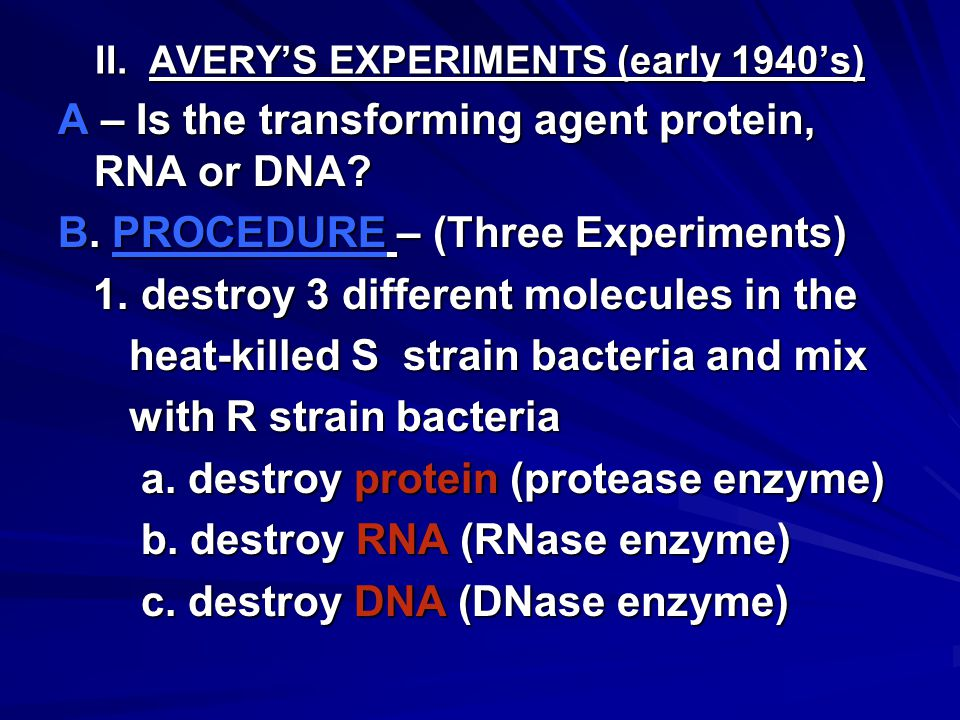 II. AVERY'S EXPERIMENTS (early 1940's) A – Is the transforming agent protein, RNA or DNA.