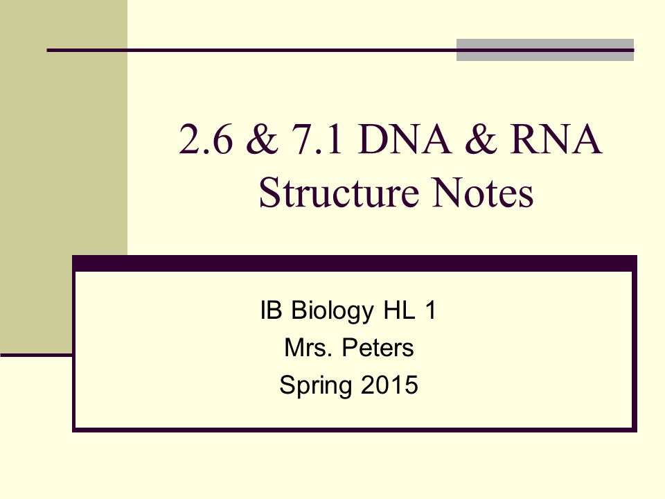 2.6 & 7.1 DNA & RNA Structure Notes IB Biology HL 1 Mrs. Peters Spring 2015