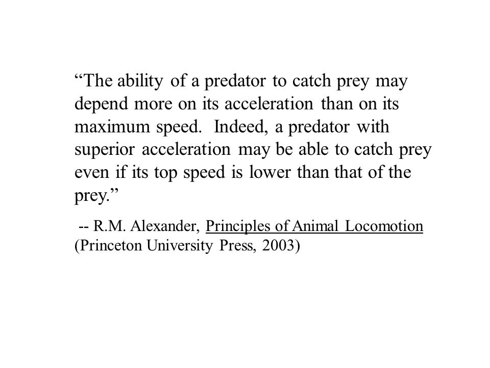 The ability of a predator to catch prey may depend more on its acceleration than on its maximum speed.