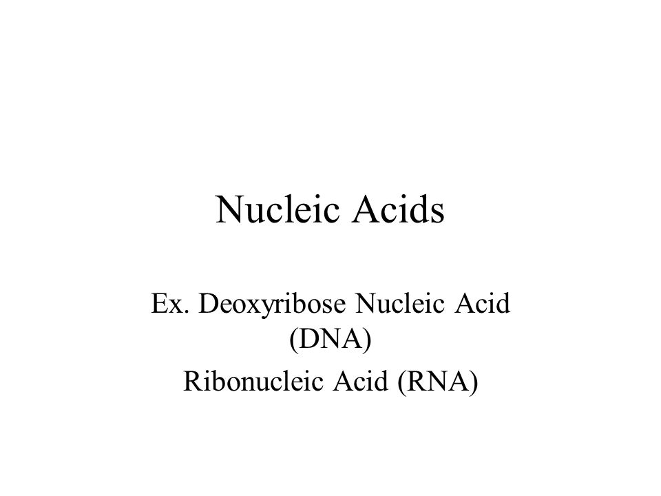 Nucleic Acids –Informational Polymers: Code for all of the proteins in an organism –Monomers: Nucleotides –Each Nucleotide is made up of: 1) Phosphate Group 2) Pentose 5-C Sugar –Ribose or deoxyribose 3) Nitrogenous bases –Adenine (A), Cytosine(C), Thymine (T), Guanine(G), and Uracil (U)