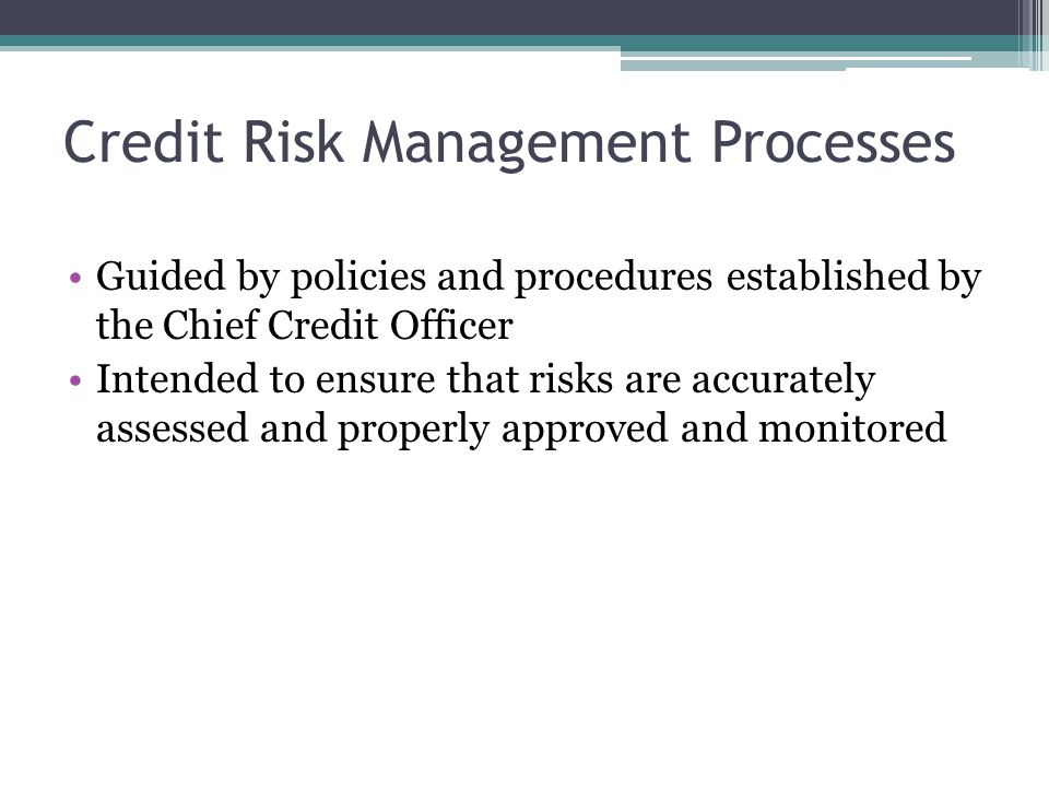 Credit Risk Management Processes Guided by policies and procedures established by the Chief Credit Officer Intended to ensure that risks are accurately assessed and properly approved and monitored