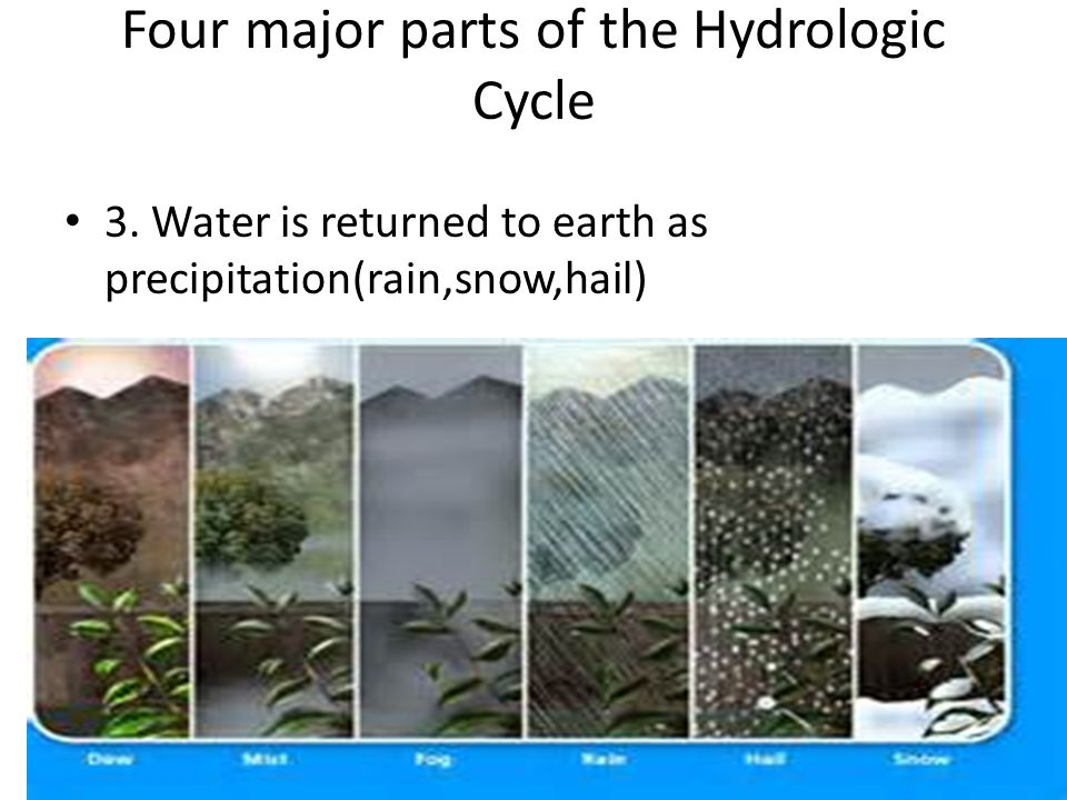 Four major parts of the Hydrologic Cycle 3.