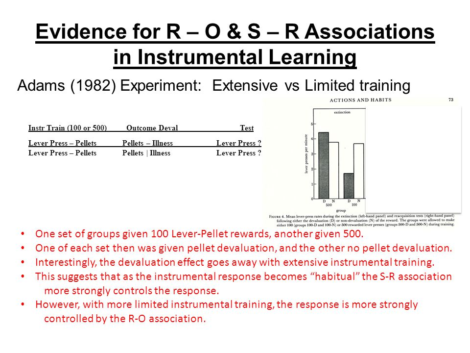 Evidence for R – O & S – R Associations in Instrumental Learning Adams (1982) Experiment: Extensive vs Limited training One set of groups given 100 Lever-Pellet rewards, another given 500.