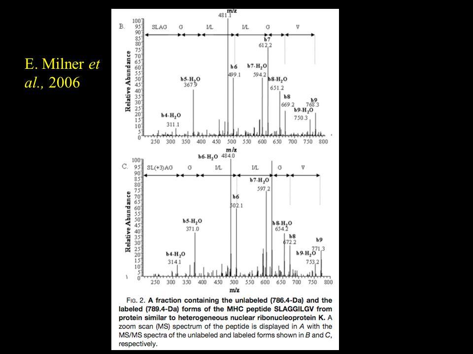 E. Milner et al., 2006