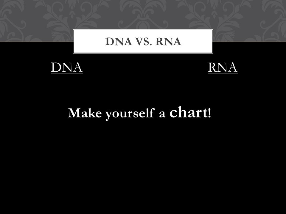 DNA DNA VS. RNA RNA Make yourself a chart !