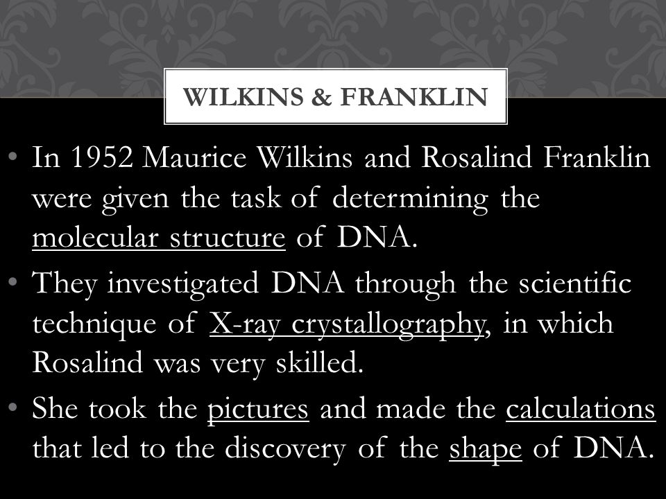 Rosalind Franklin's X- ray diffraction Photo 51 (B) which clarified the double helix shape of DNA.