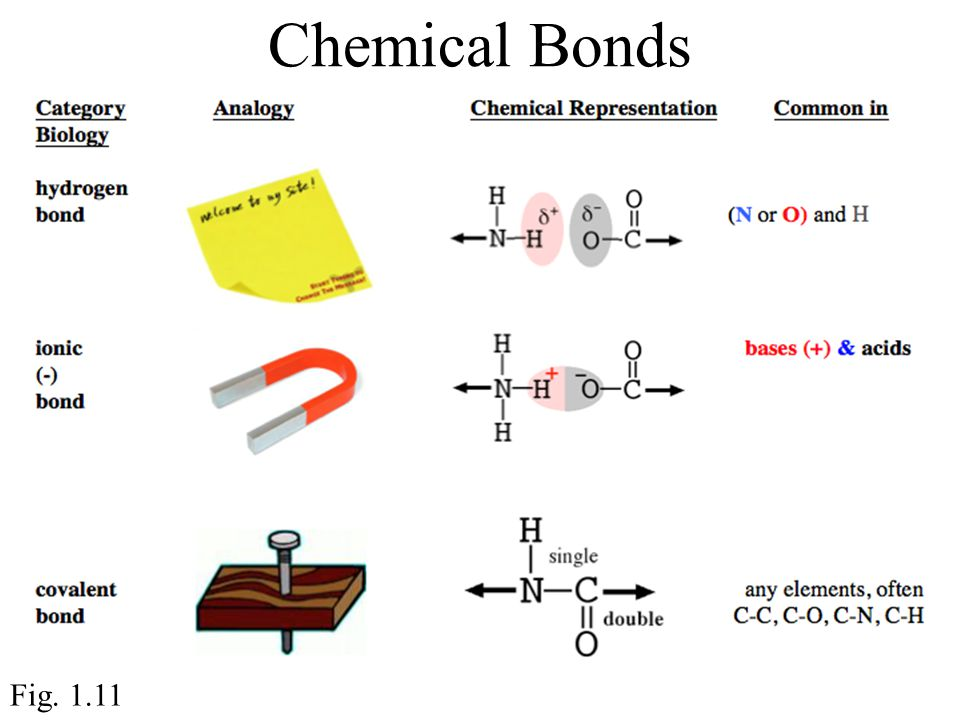 Chemical Bonds Fig. 1.11