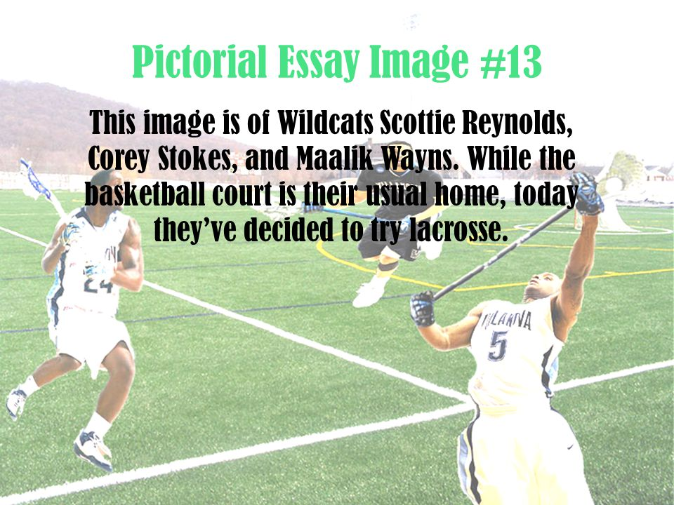Pictorial Essay Image #13 This image is of Wildcats Scottie Reynolds, Corey Stokes, and Maalik Wayns. While the basketball court is their usual home,