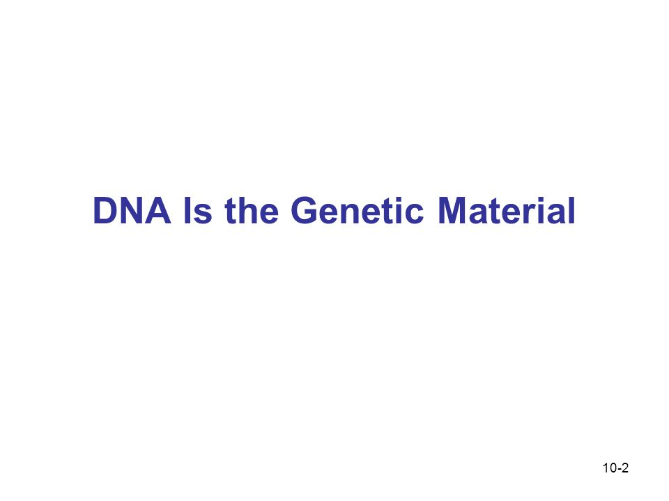 10-2 DNA Is the Genetic Material