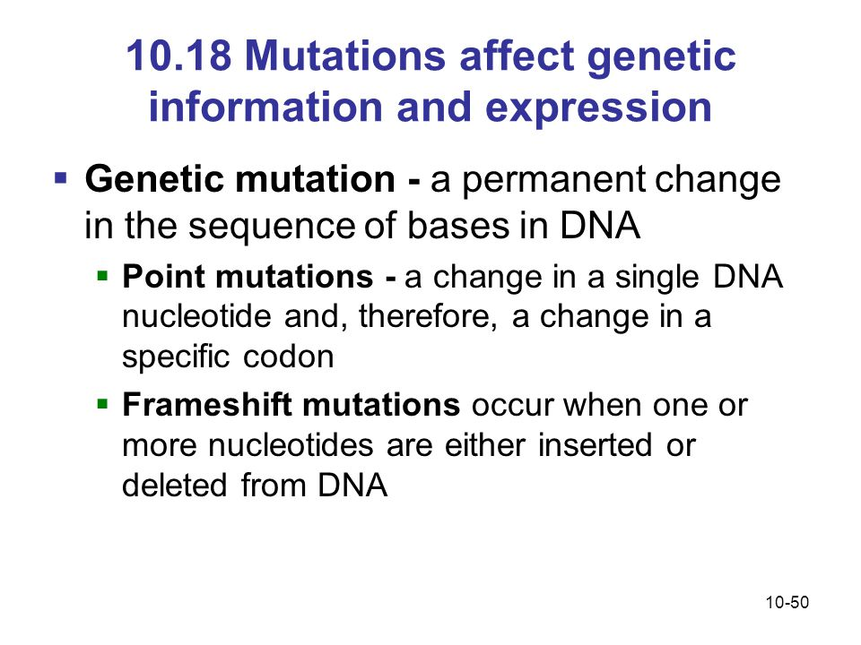 10-50 10.18 Mutations affect genetic information and expression  Genetic mutation - a permanent change in the sequence of bases in DNA  Point mutations - a change in a single DNA nucleotide and, therefore, a change in a specific codon  Frameshift mutations occur when one or more nucleotides are either inserted or deleted from DNA