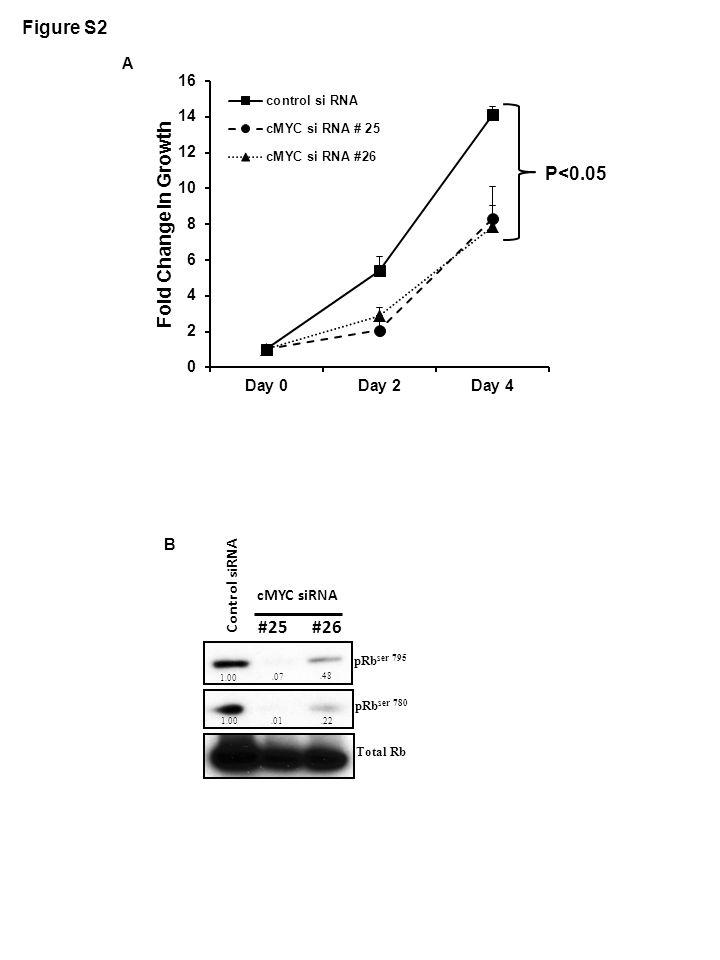 Figure S2 P<0.05 A pRb ser 780 Total Rb pRb ser 795 1.00.07.48 1.00.01.22 #25 #26 Control siRNA cMYC siRNA B