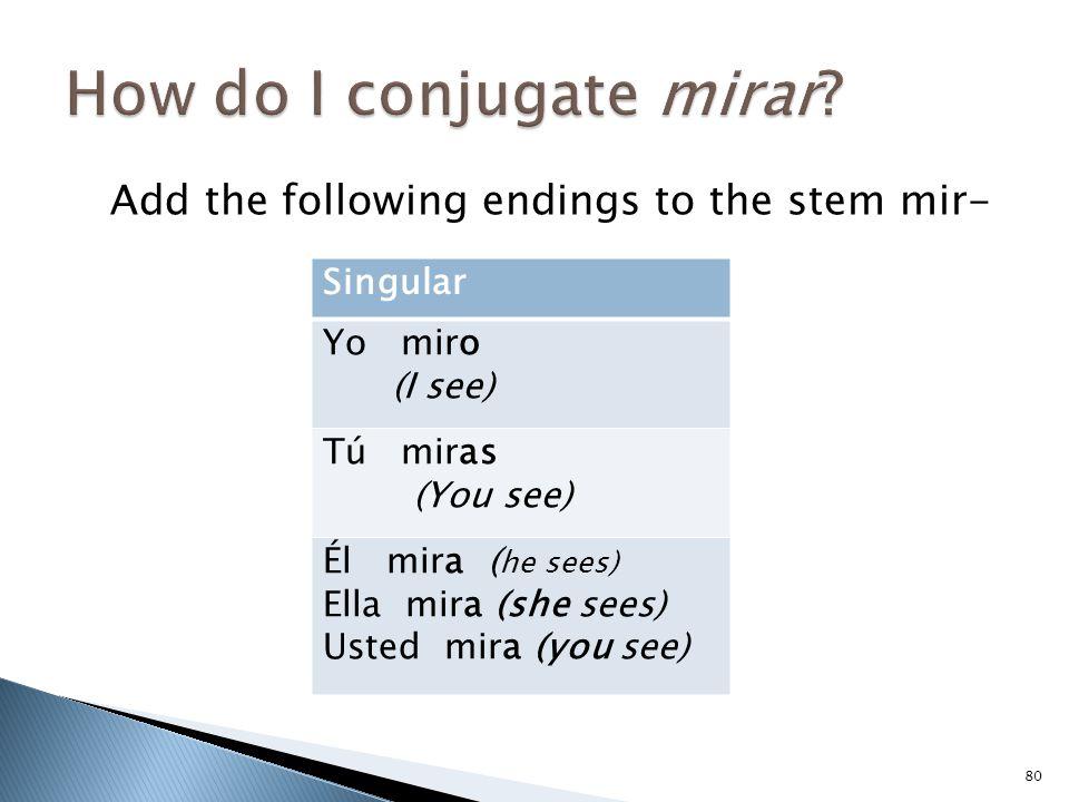 Add the following endings to the stem mir- 80 Singular Yo miro (I see) Tú miras (You see) Él mira ( he sees) Ella mira (she sees) Usted mira (you see)