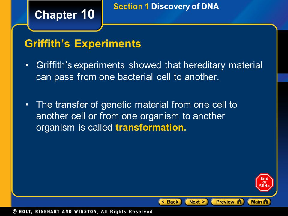 Section 1 Discovery of DNA Chapter 10 Griffith's Experiments Griffith's experiments showed that hereditary material can pass from one bacterial cell t