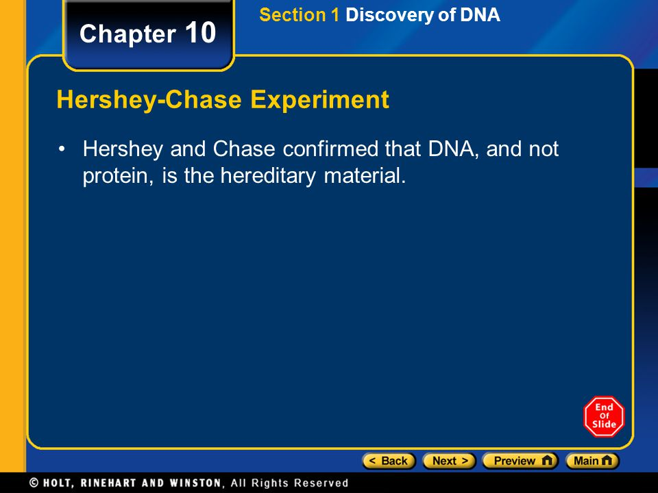Section 4 Protein Synthesis Chapter 10 Transcription During transcription, DNA acts as a template for directing the synthesis of RNA.