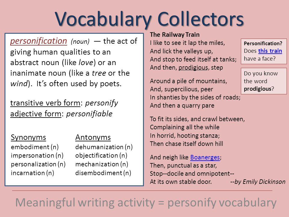 Vocabulary Collectors Meaningful writing activity = personify vocabulary Mirror by Sylvia Plath I am silver and exact.