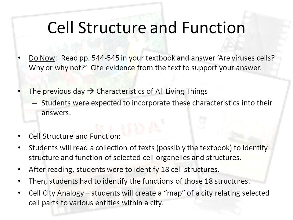 Cell Structure and Function Do Now: Read pp. 544-545 in your textbook and answer 'Are viruses cells? Why or why not?' Cite evidence from the text to s