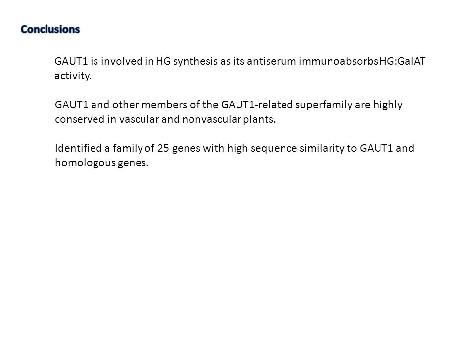 GAUT1 is involved in HG synthesis as its antiserum immunoabsorbs HG:GalAT activity.