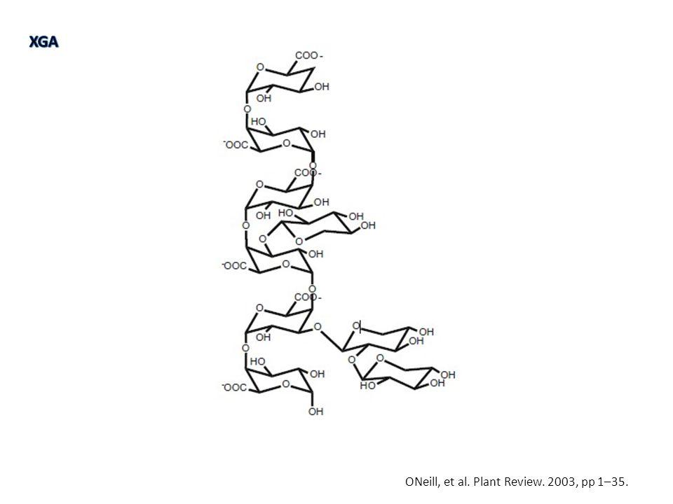 ONeill, et al. Plant Review. 2003, pp 1–35.