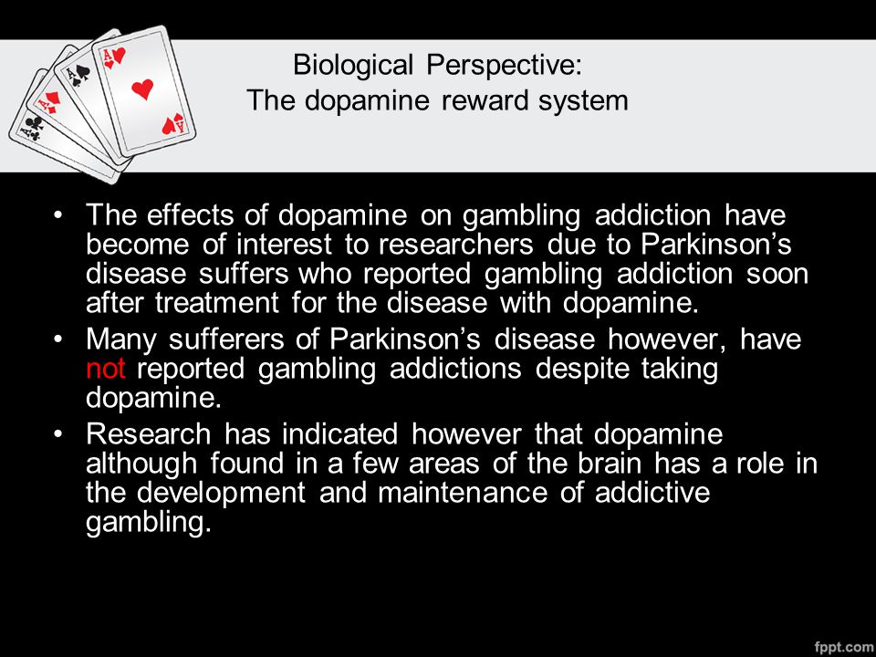 Biological Perspective: The dopamine reward system The effects of dopamine on gambling addiction have become of interest to researchers due to Parkinson's disease suffers who reported gambling addiction soon after treatment for the disease with dopamine.
