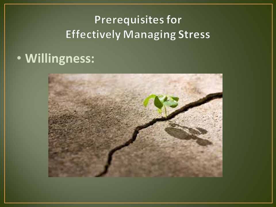 Willingness: