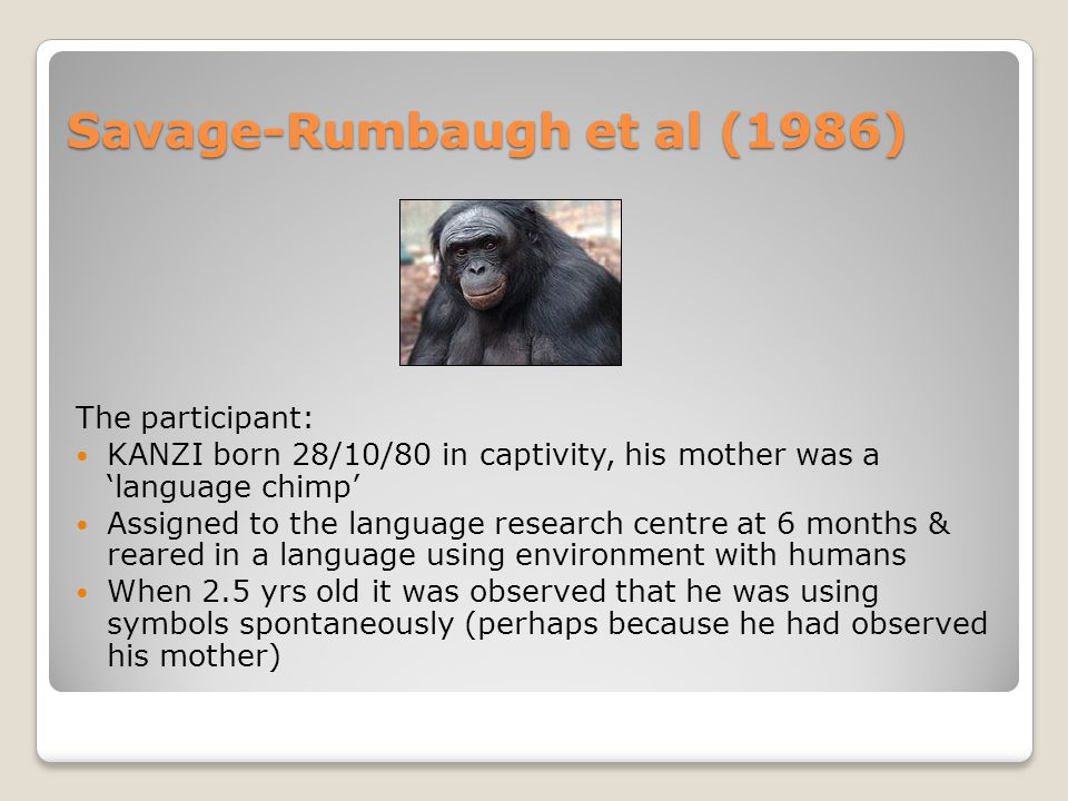 Savage-Rumbaugh et al (1986) Kanzi: comparison of imitated or spontaneous to 'other ape learners'