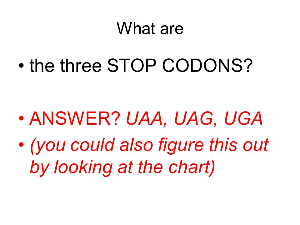 What are the three STOP CODONS. ANSWER.