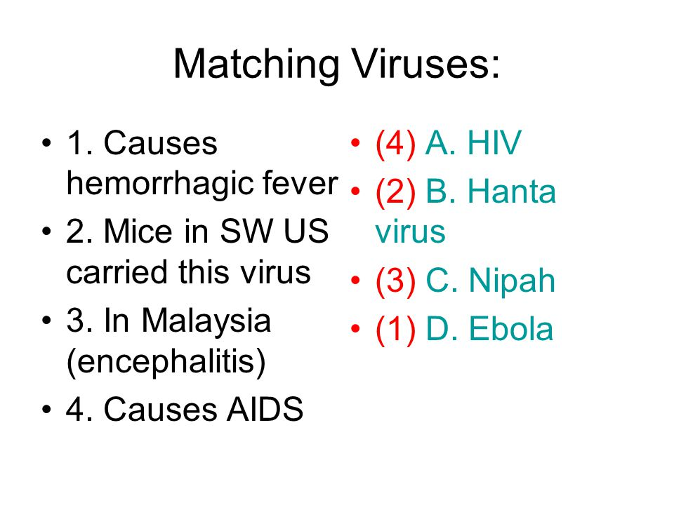 Matching Viruses: 1. Causes hemorrhagic fever 2. Mice in SW US carried this virus 3.