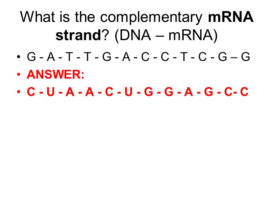 What are the 3 types of RNA.