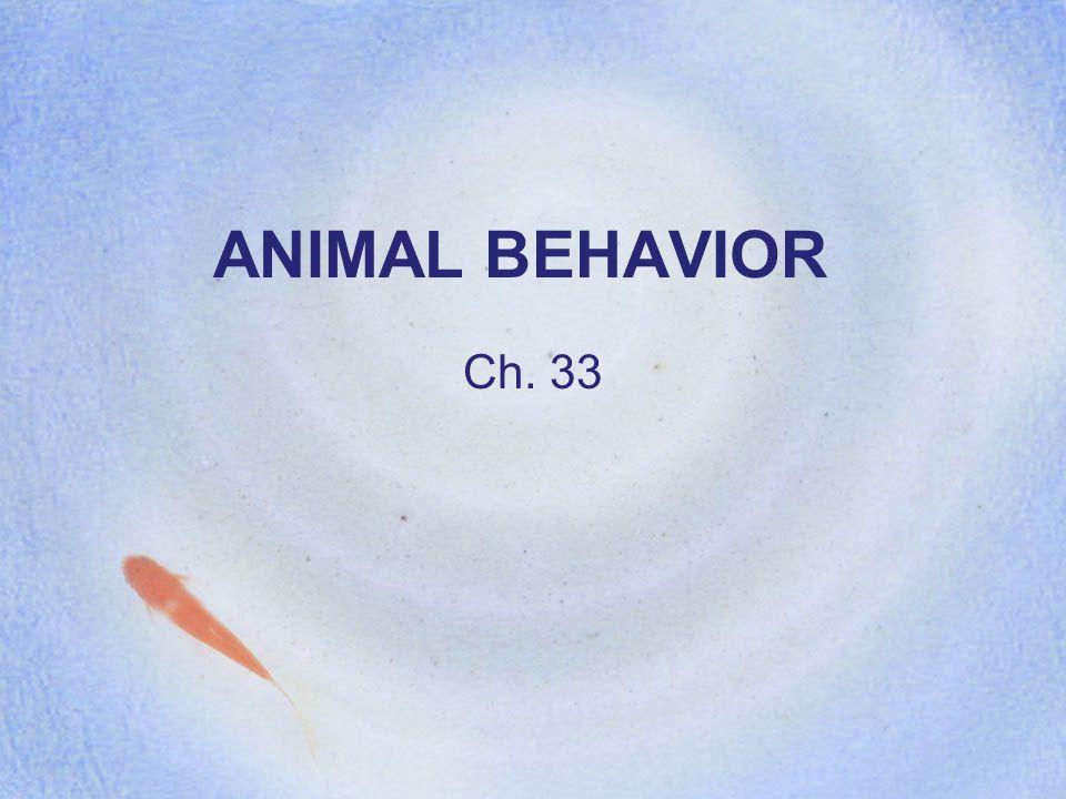 ANIMAL BEHAVIOR Ch. 33