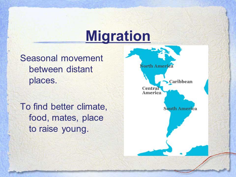 Migration Seasonal movement between distant places.