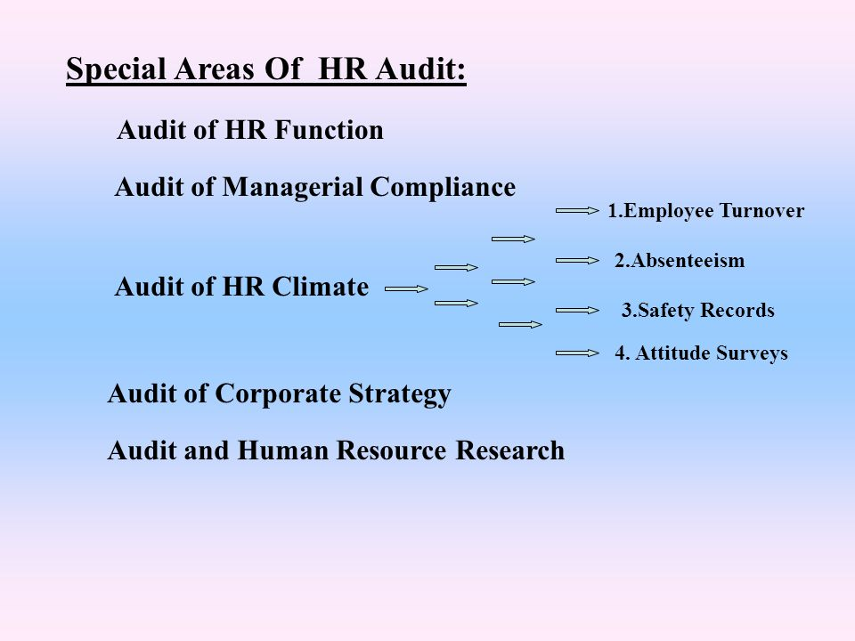 Special Areas Of HR Audit: Audit of HR Function Audit of Managerial Compliance Audit of HR Climate 1.Employee Turnover 2.Absenteeism 3.Safety Records
