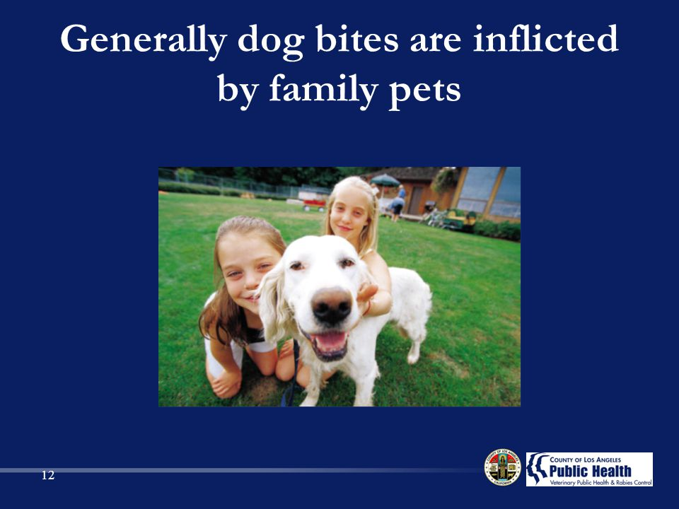 Generally dog bites are inflicted by family pets 12