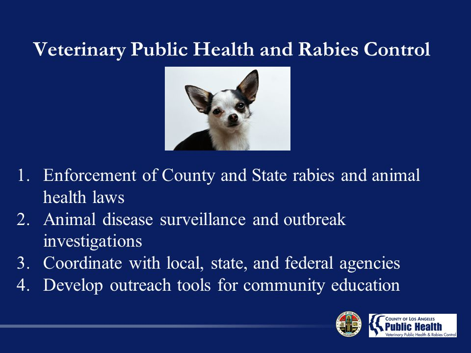 Veterinary Public Health and Rabies Control 1.Enforcement of County and State rabies and animal health laws 2.Animal disease surveillance and outbreak investigations 3.Coordinate with local, state, and federal agencies 4.Develop outreach tools for community education