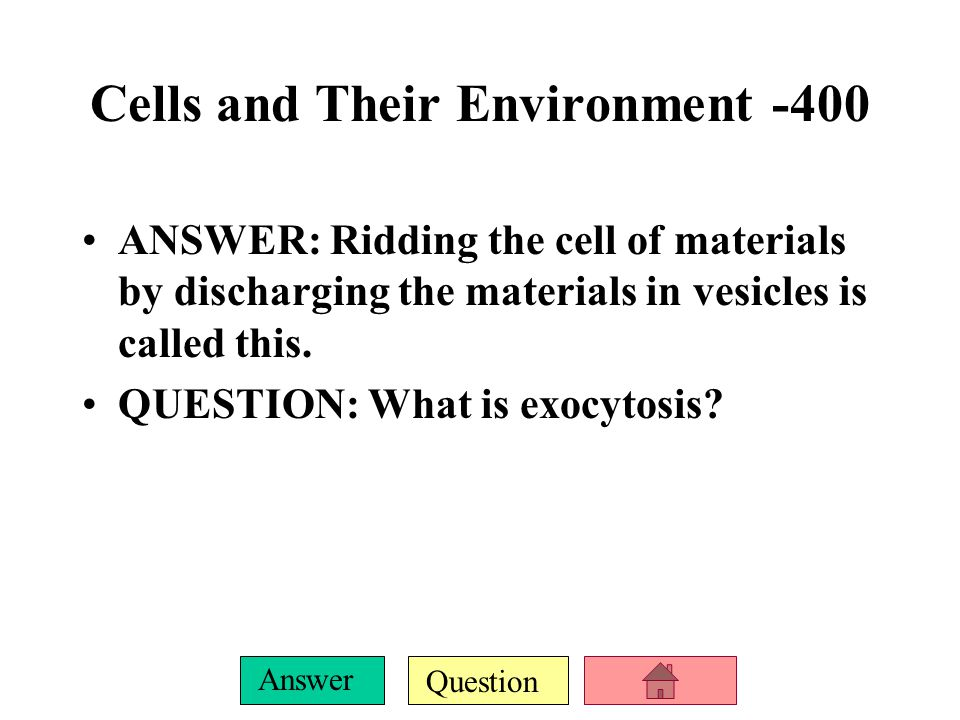 Question Answer Cells and Their Environment -300 ANSWER: This is the packaging and distribution center of the cell. QUESTION: What is the Golgi Appara