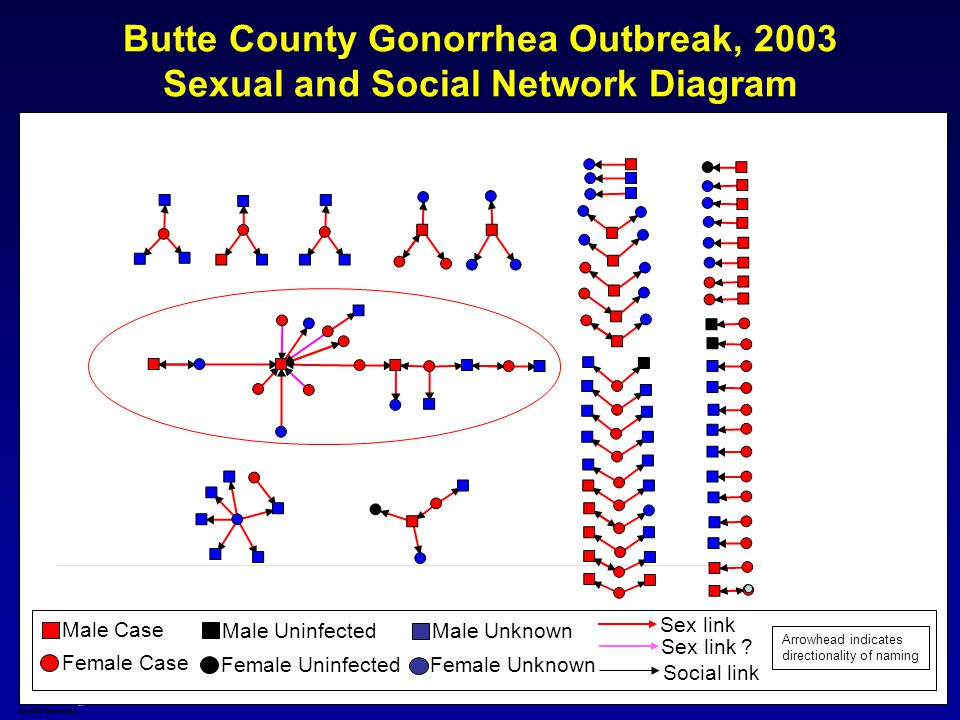 Butte County Gonorrhea Outbreak, 2003 Sexual and Social Network Diagram Male Case Female Case Sex link Social link Male Uninfected Female Uninfected Arrowhead indicates directionality of naming Sex link .