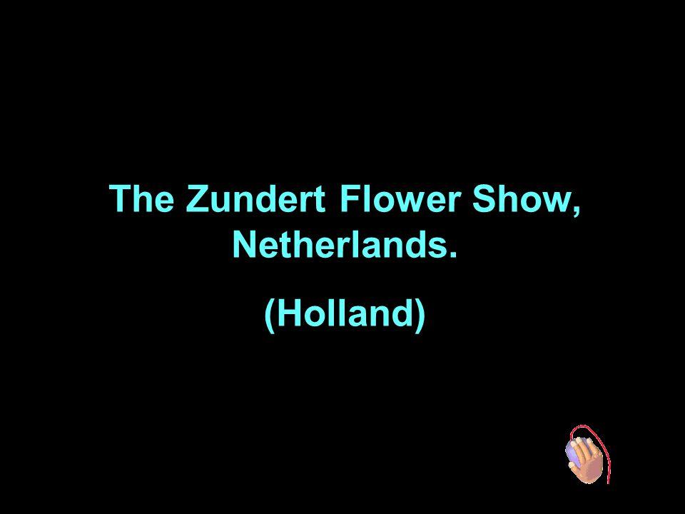 The Zundert Flower Show, Netherlands. (Holland)