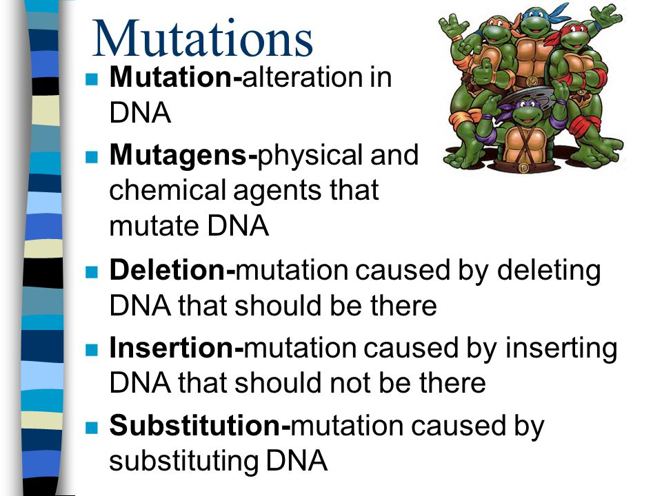 Mutations n Mutation-alteration in DNA n Mutagens-physical and chemical agents that mutate DNA n Deletion-mutation caused by deleting DNA that should