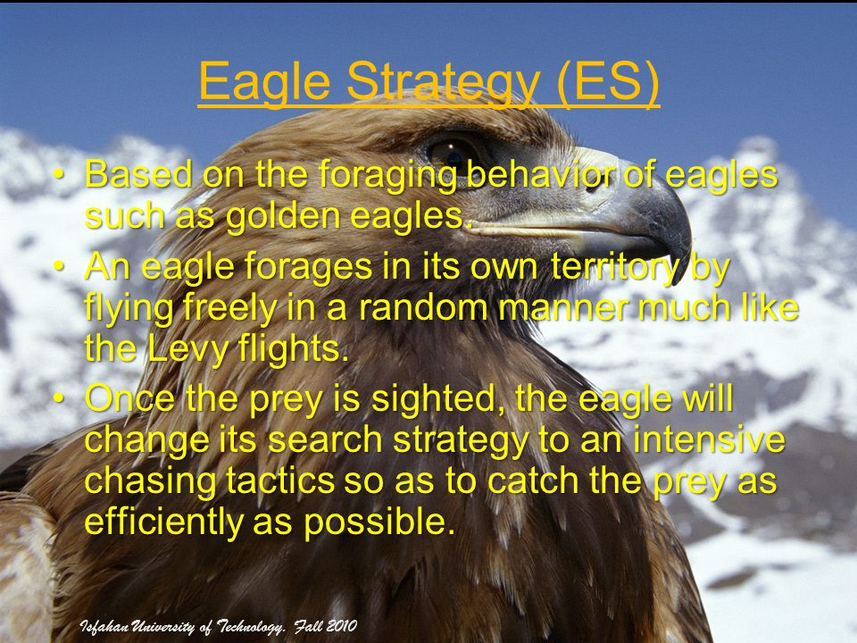 28 Eagle Strategy (ES) Based on the foraging behavior of eagles such as golden eagles.Based on the foraging behavior of eagles such as golden eagles.