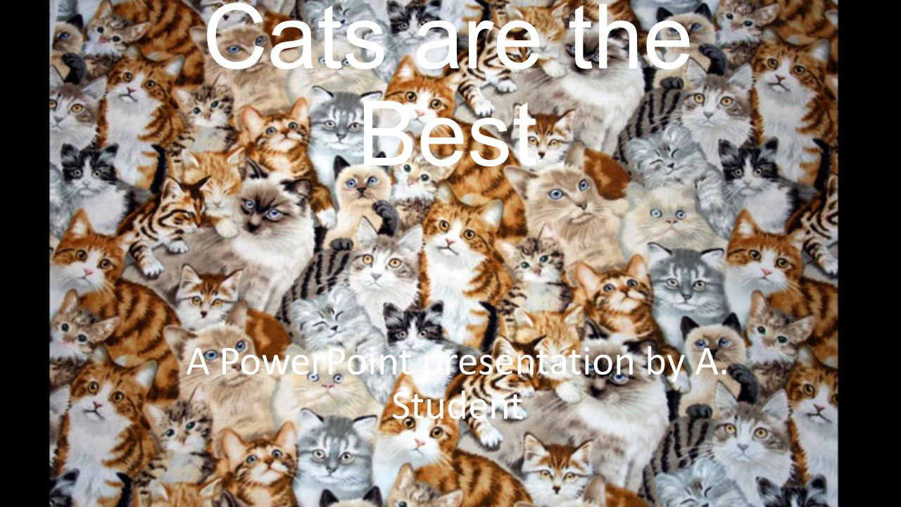 Cats are the Best A PowerPoint presentation by A. Student